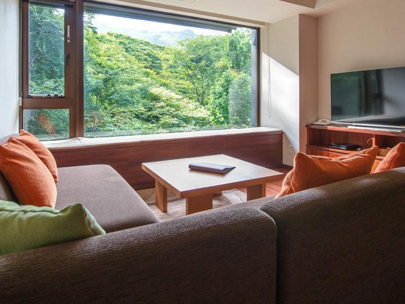 2018 1 Bedroom Resort Views Living Room Summer